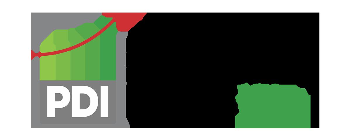 PDI 2019-2013