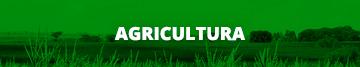 Agricultura (Menor)