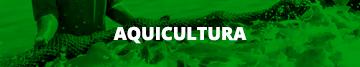 Aquicultura (Menor)
