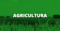 Agricultura (link)