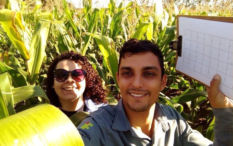 Um dos projetos do Campus Ponta Porã analisa a aplicação de extratos vegetais no controle de doenças