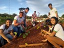 """Projeto """"Hortaliças não convencionais: resgate do cultivo e benefícios nutricionais"""""""