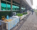 Projeto Feira Agroecológica